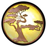 Bonzai Pine